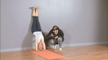 4 ways to practice forearmstand  yoga international