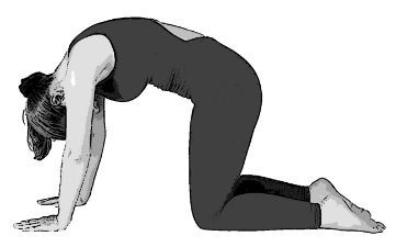 yoga for osteoarthritis