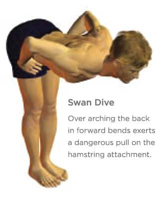 swan dive for hamstring